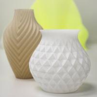 Raise3D Pro2 Plus - impression 3d - vase