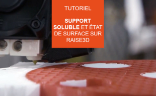raise3d support soluble